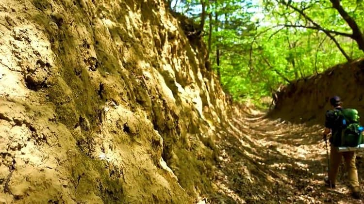 Loess Hills Wildlife Management Area