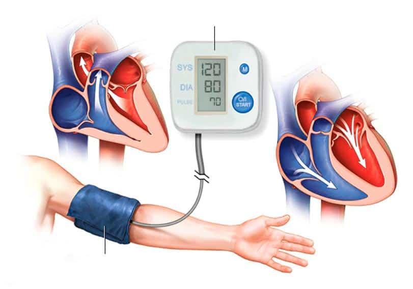 Medicion de la presion arterial