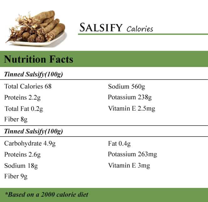 Salsify Calories