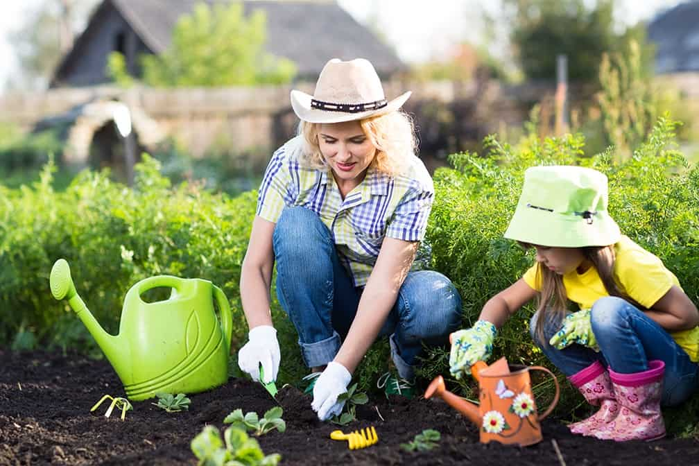 The Humble Vegetable Garden A Fun Health conscious Home Project for the Entire Family