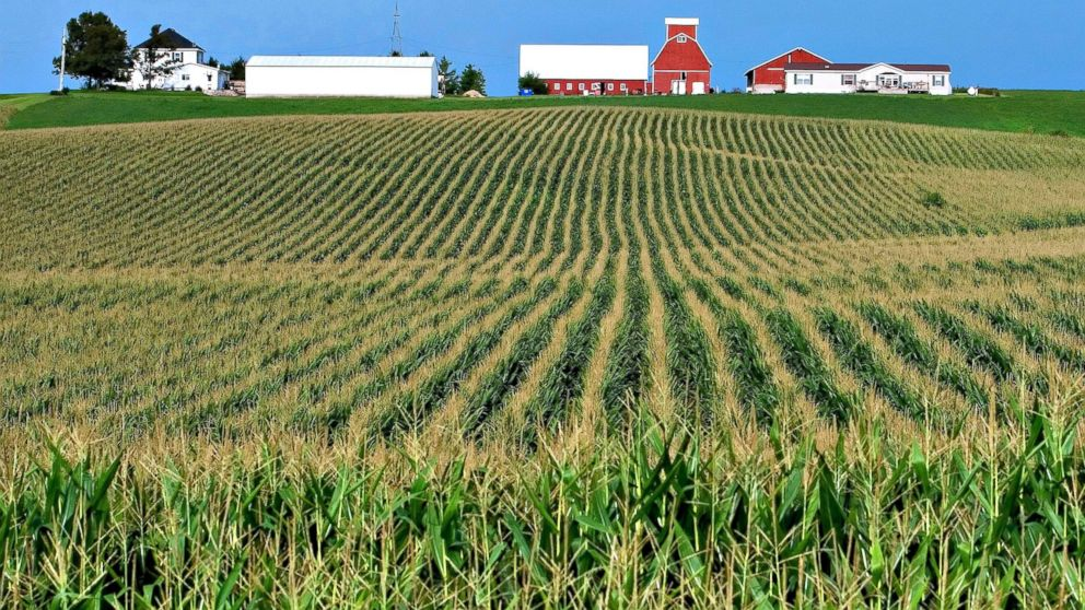 agricultural in Iowa