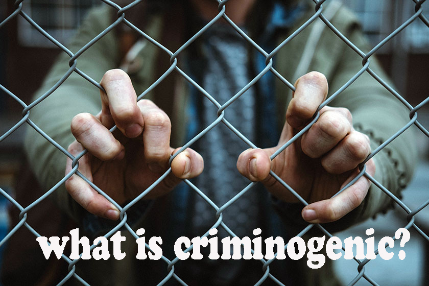 criminogenic needs