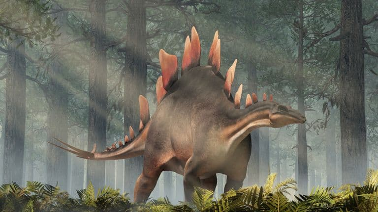 skynews stegosaurus dinosaur